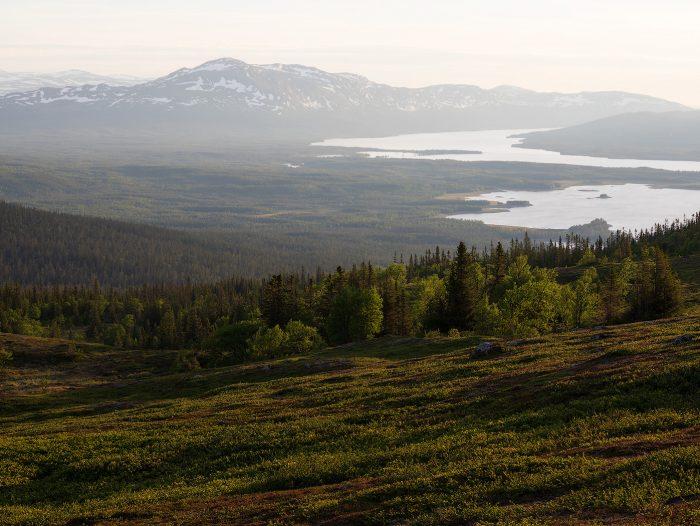 Vålådalens Nature Reserve