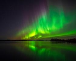 Magical Show   Hara, Jämtland